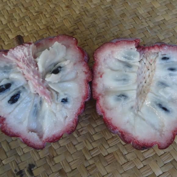zatte rouge_fruit ouvert